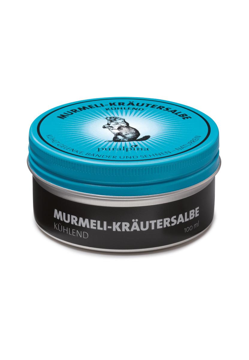Murmeli-Kräutersalbe kühlend Dose-50 ml